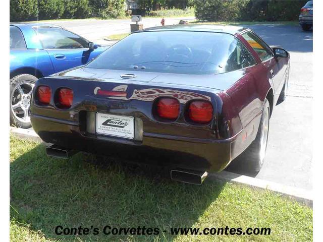 1992 Chevrolet Corvette | 910445