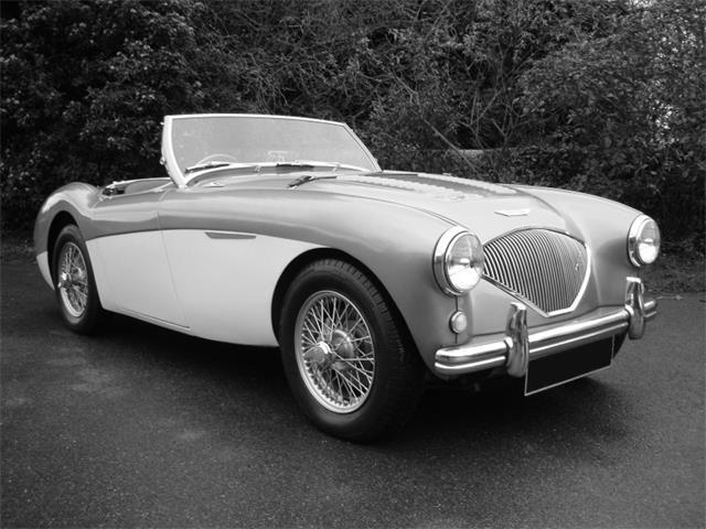 1955 Austin Healey 100 M | 915255