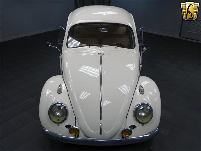 1965 Volkswagen Beetle | 916382