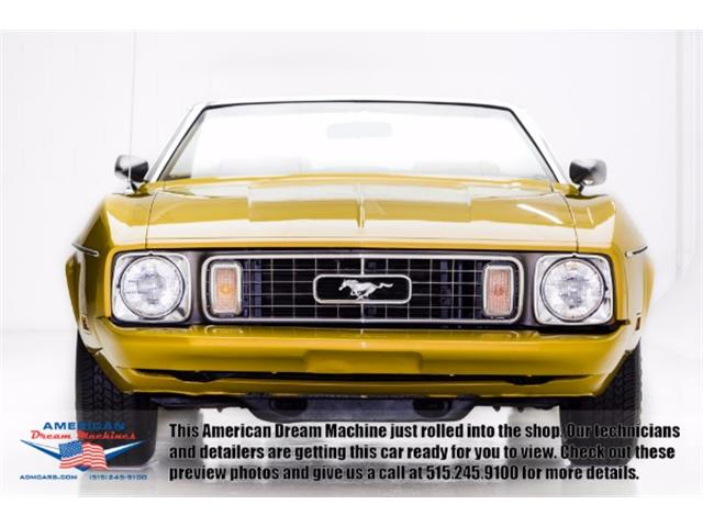 1973 Ford Mustang   922069