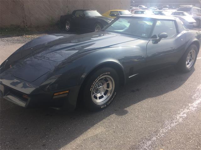 1981 Chevrolet Corvette | 922480