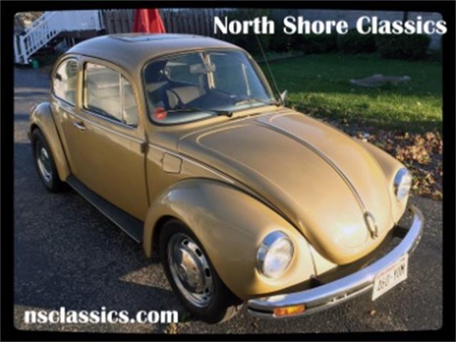 1973 Volkswagen Beetle | 923894