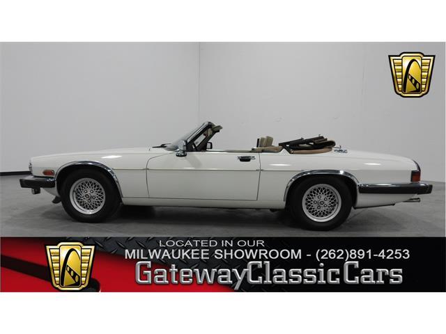 1991 Jaguar XJS | 924213
