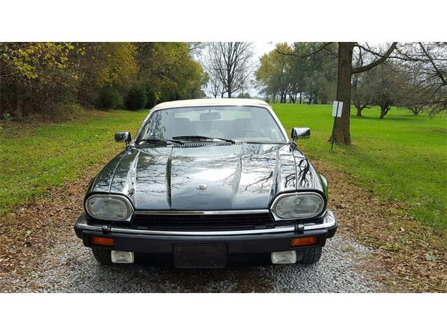 1992 Jaguar XJS | 920508