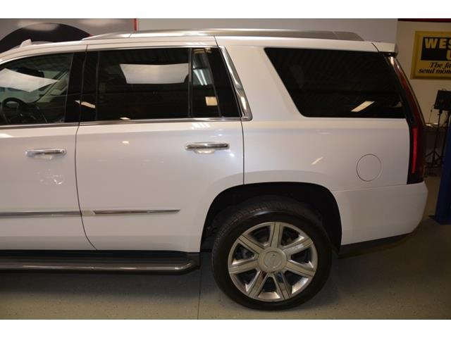 Car Dealers In Shelby Township Michigan