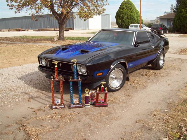 1973 Ford Mustang | 920670