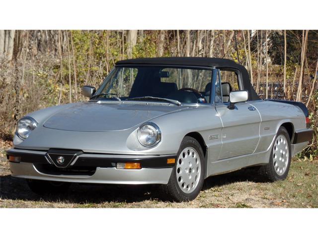 1989 Alfa Romeo Quadrifoglio | 927249