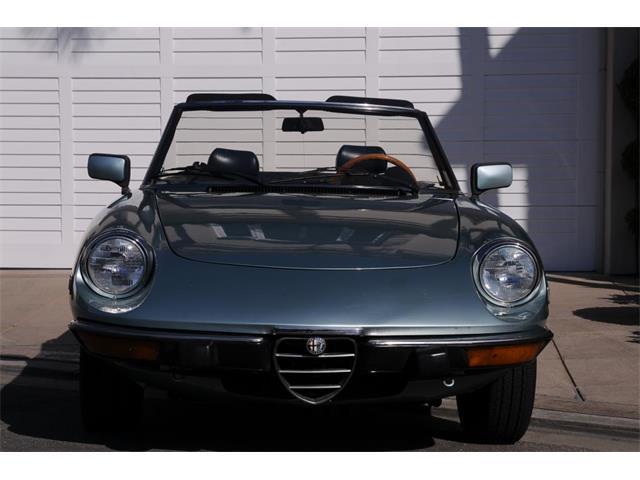 1982 Alfa Romeo 2000 Spider Veloce | 928191