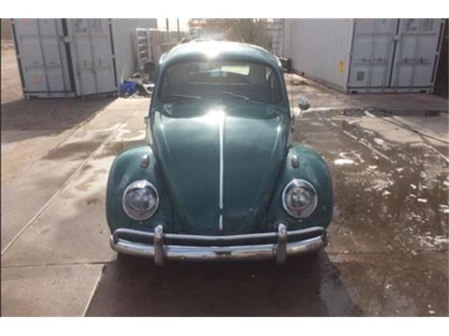 1964 Volkswagen Beetle | 933219
