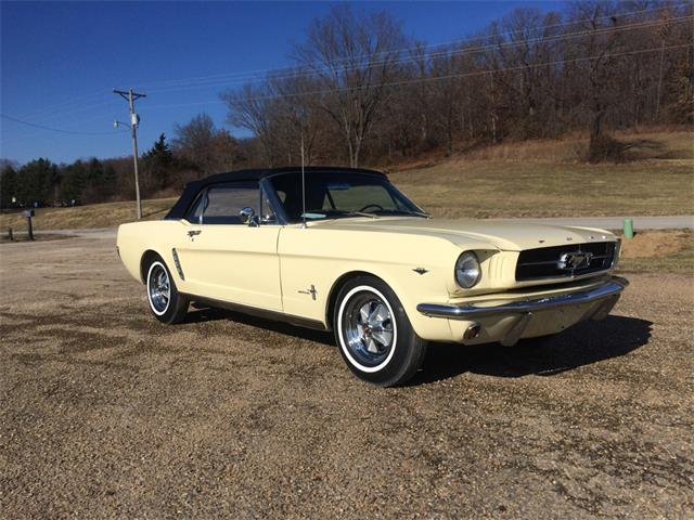 1964 Ford Mustang | 934479