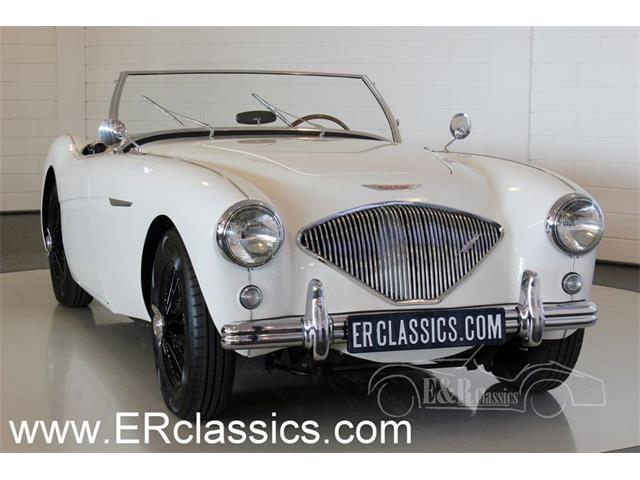 1955 Austin-Healey 100-4 | 934947