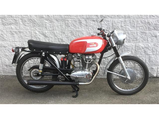 1965 Ducati Mark III | 935782