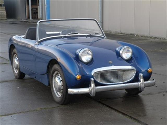 1960 Austin Healey  Frogeye | 937916