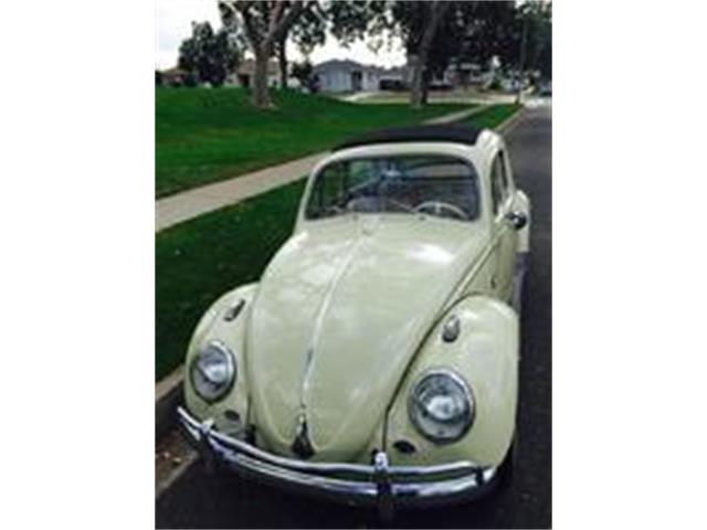 1963 Volkswagen Beetle | 938582