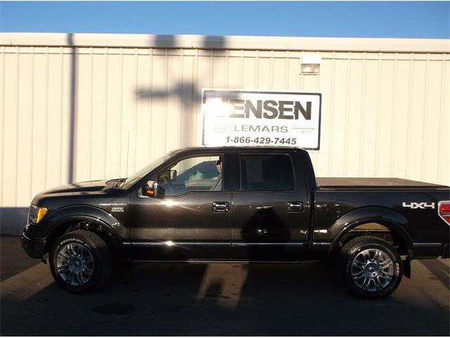 2010 Ford F150 | 939253