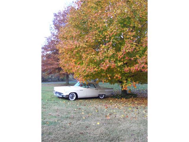 1957 Ford Thunderbird | 939288