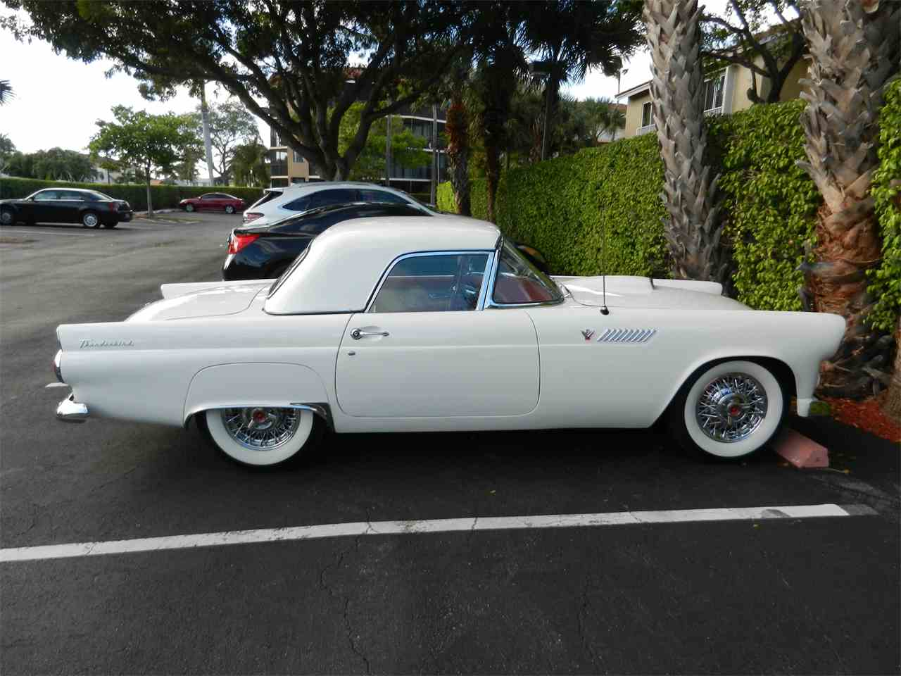 1955 ford thunderbird for sale cc 940193. Black Bedroom Furniture Sets. Home Design Ideas