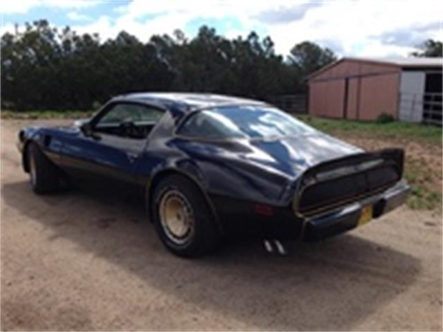 1980 Pontiac Trans Am Special Edition | 942607