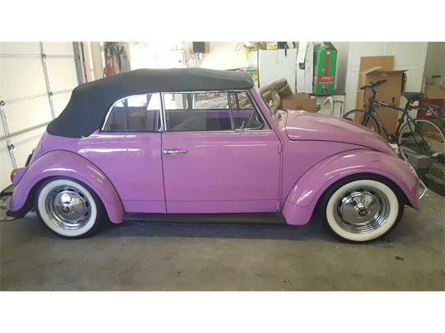 1965 Volkswagen Beetle | 944242