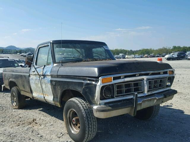 1976 Ford F150 | 944608