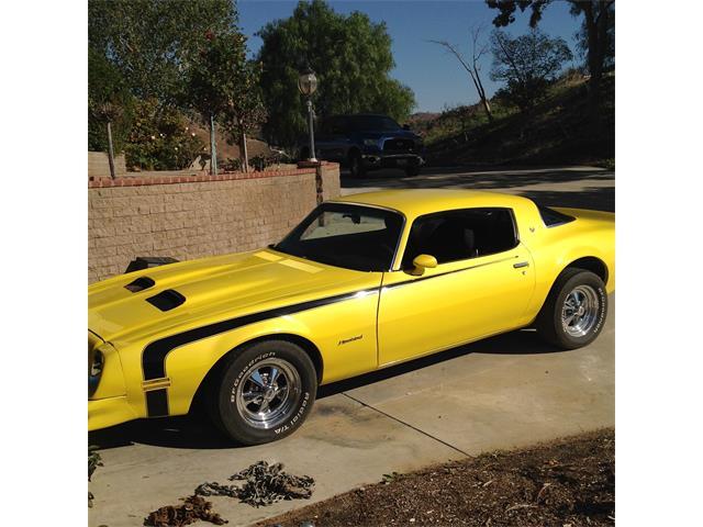 1976 Pontiac Firebird 400 | 940516