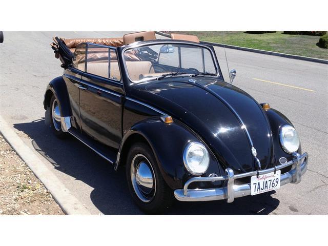 1965 Volkswagen Beetle | 946187