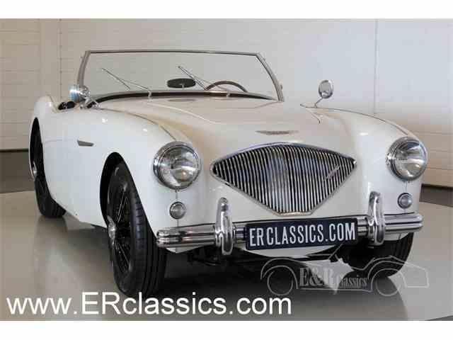 1955 Austin-Healey 100-4 | 947565