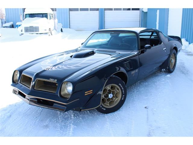 1976 Pontiac Firebird Trans Am | 948705