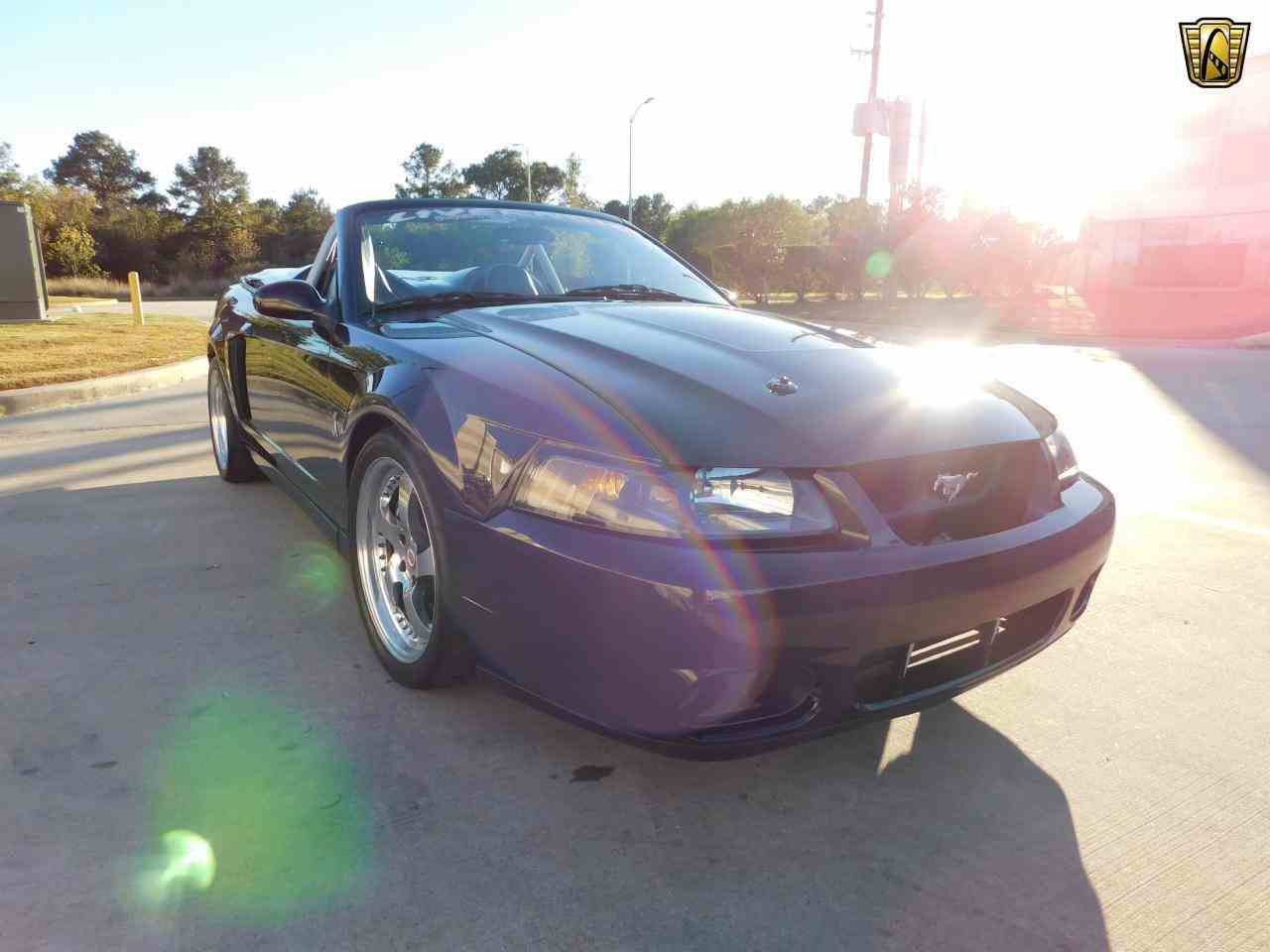 Large Picture of '03 Mustang - KEQH