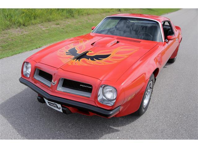 1974 Pontiac Firebird Trans Am | 953047
