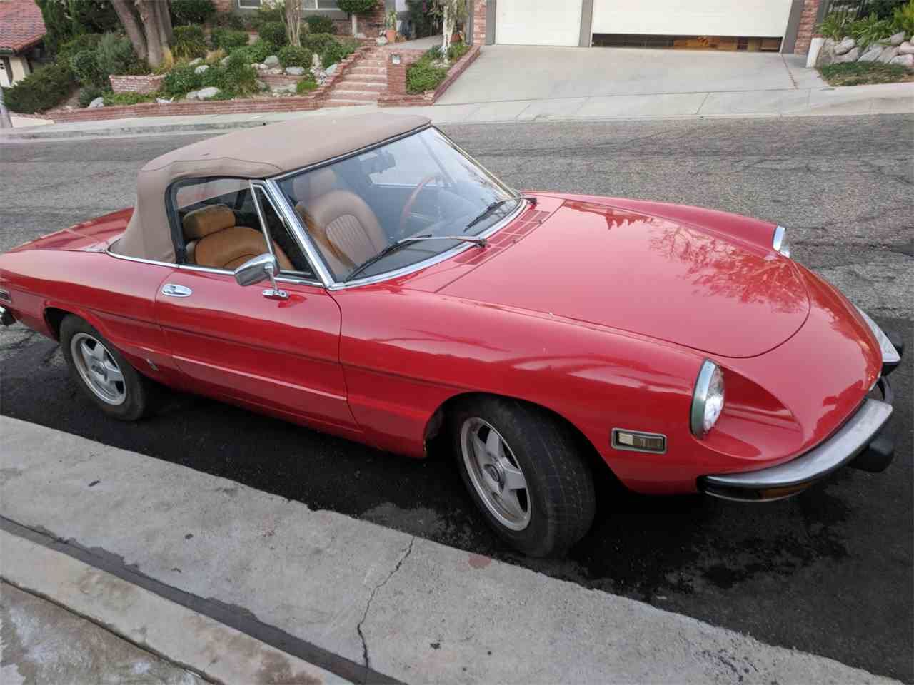 1974 Alfa Romeo Spider for Sale - CC-950547