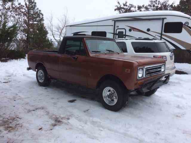 1979 International Scout | 955713