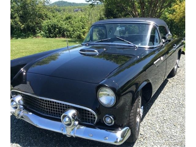 1955 Ford Thunderbird | 957176