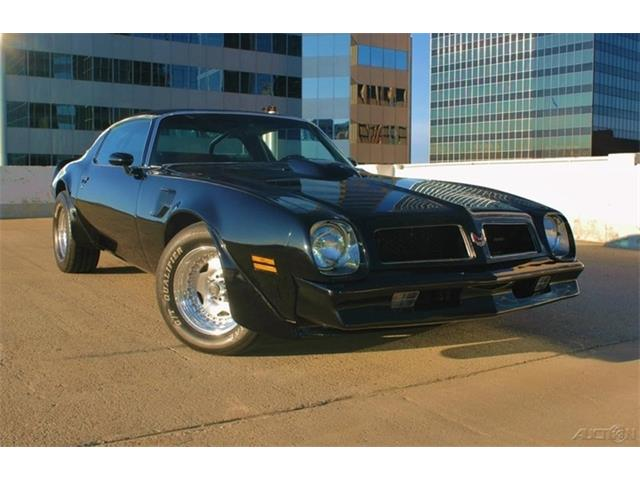 1976 Pontiac Firebird Trans Am | 957216