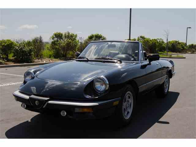 1987 Alfa Romeo Spider | 972835