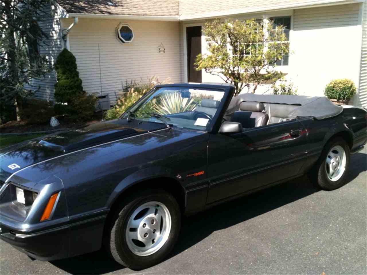 Picture of 1984 ford mustang gt350 exterior - 1984 Ford Mustang Gt 973461