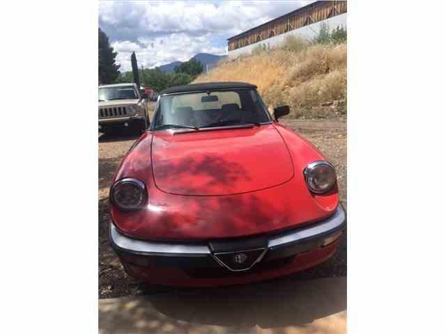 1986 Alfa Romeo Quadrifoglio | 978419