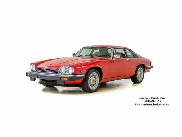 1986 Jaguar XJS | 985931