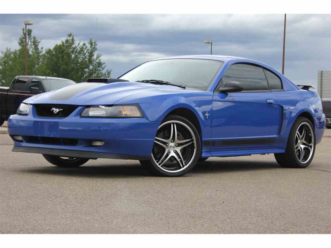 2003 ford mustang mach 1 for sale cc 993949. Black Bedroom Furniture Sets. Home Design Ideas