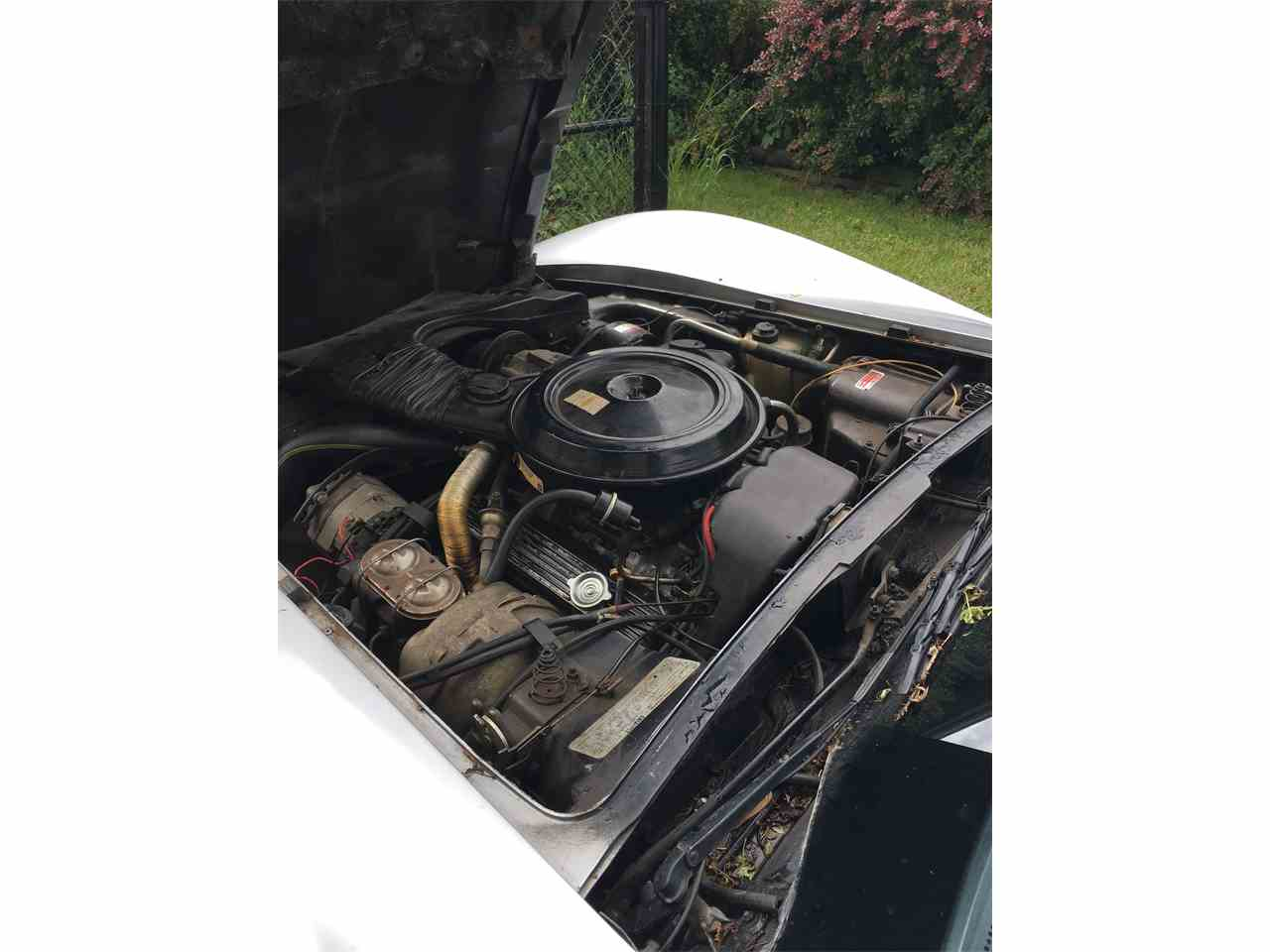 Large Picture of '78 Corvette - LB2V