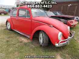 Picture of Classic 1969 Volkswagen Beetle located in South Carolina Offered by Classic Cars of South Carolina - LC46