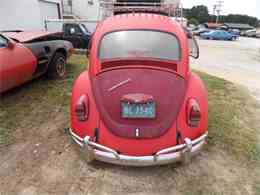 Picture of Classic 1969 Beetle located in Gray Court South Carolina Offered by Classic Cars of South Carolina - LC46