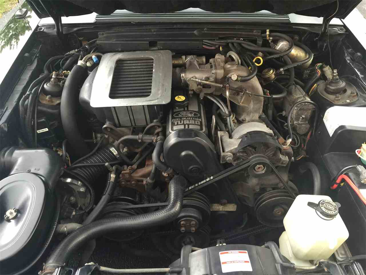 Large Picture of 1986 Ford Mustang SVO Offered by a Private Seller - L8BI