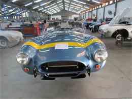 2017 Shelby MKII FIA for Sale - CC-990578